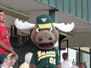 Broose the Moose, mascot for the Sanford Mainer's Baseball team.