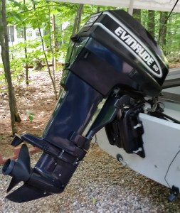 Evinrude 50 hp twin-cylinder motor for the boat and it has an electric trolling motor too.